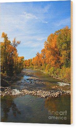 Yampa River Wood Print by Dana Kern