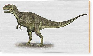Yangchuanosaurus Shangiouensis Wood Print by Sergey Krasovskiy