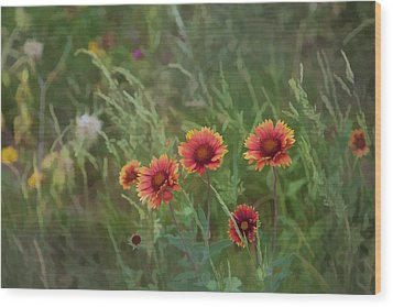 Wood Print featuring the photograph Yawn...more Flowers by John Crothers