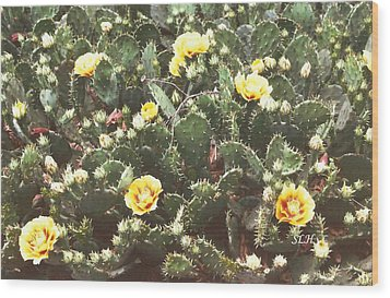 Yellow Cactus Wood Print