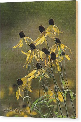 Yellow Coneflowers Wood Print by Bruce Morrison