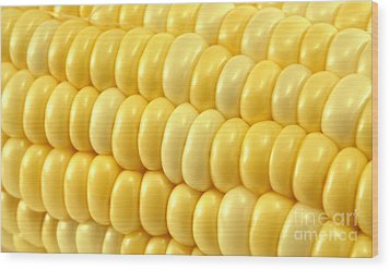 Yellow Corn Macro Wood Print by Blink Images