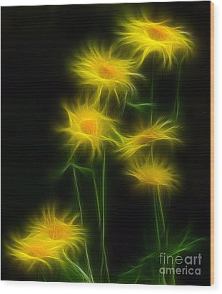 Yellow Daisy Floral  Wood Print by Marjorie Imbeau
