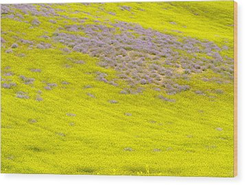 Yellow Fields Wood Print by Guido Montanes Castillo