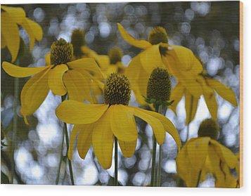 Yellow Flowers Wood Print by Naomi Berhane