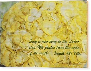 Yellow Hydrangea Isaiah 42v10 Wood Print by Linda Phelps