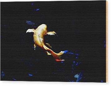 Yellow Koi Wood Print by Don Mann