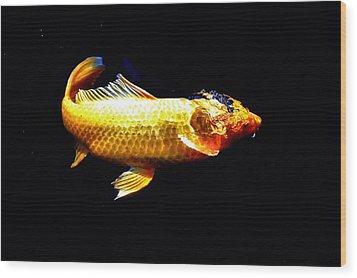 Yellow Koi Rises Wood Print by Don Mann