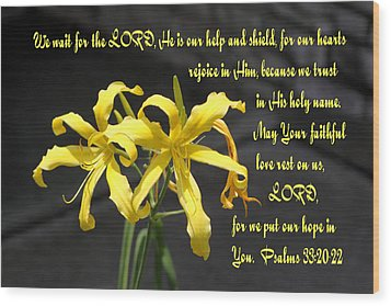 Yellow Lilies Ps. 33v20-22 Wood Print by Linda Phelps