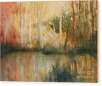 Yellow Medicine Creek 2 Wood Print by Julie Lueders
