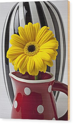 Yellow Mum In Pitcher  Wood Print by Garry Gay