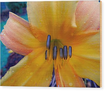 Yellow Orange Flower Wood Print by Don L Williams