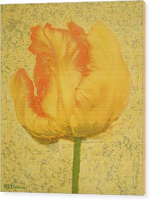 Yellow Parrot Tulip Wood Print