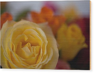 Yellow Rose Wood Print by Carole Hinding