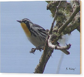 Wood Print featuring the photograph Yellow-throated Warbler by Roena King