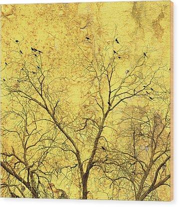 Yellow Wall Wood Print by Skip Nall