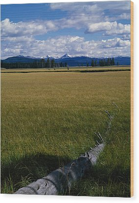 Wood Print featuring the photograph Yellowstone Log by J L Woody Wooden