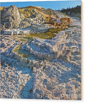 Yellowstone National Park - Mammoth Hot Springs - 02 Wood Print by Gregory Dyer