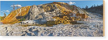 Yellowstone National Park - Mammoth Hot Springs - Panorama Wood Print by Gregory Dyer