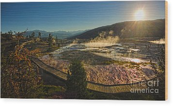 Yellowstone National Park - Minerva Terrace - 05 Wood Print by Gregory Dyer