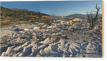 Yellowstone National Park - Minerva Terrace - 07 Wood Print by Gregory Dyer