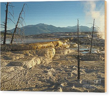 Yellowstone National Park - Minerva Terrace - 10 Wood Print by Gregory Dyer