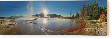 Yellowstone National Park - Minerva Terrace - Panorama Wood Print by Gregory Dyer