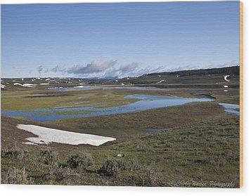 Yellowstone Plateau Wood Print by Charles Warren