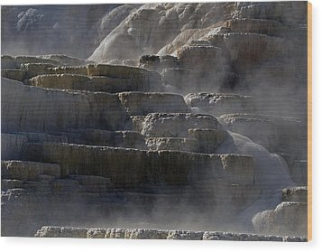 Wood Print featuring the photograph Yellowstone Texture by J L Woody Wooden