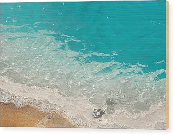 Yellowstone Thermal Pool 3 Wood Print by Peg Toliver