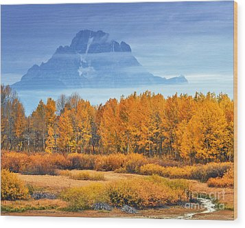 Yelow And Orange Autumn Grand Teton National Park Wood Print by Nature Scapes Fine Art