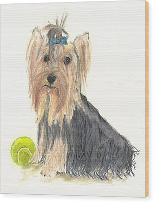 Yorkie Indy At Play Wood Print by Jessica Raines