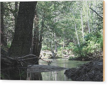 Yosemite Creek Wood Print by Remegio Onia