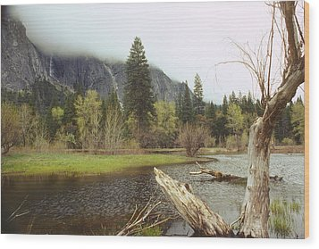 Yosemite Wood Print by Mark Greenberg