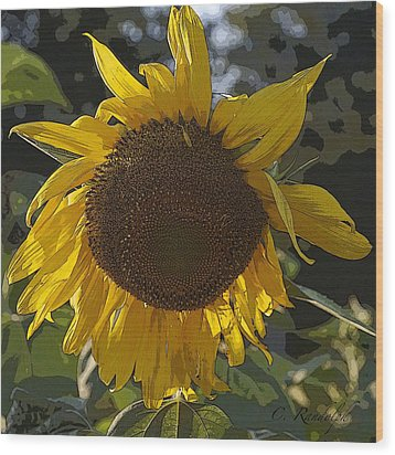Wood Print featuring the photograph You Are My Sunshine by Cheri Randolph