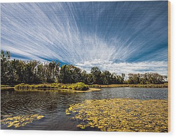 Wood Print featuring the photograph You Cannot Be Cirrus by Tom Gort