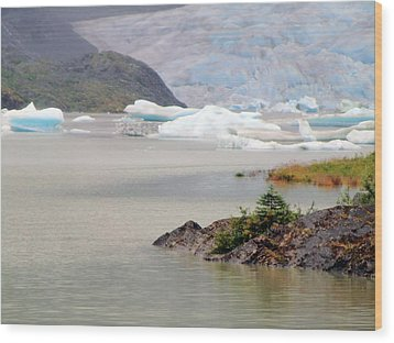 You Won't Believe Mendenhall Glacier Wood Print by Mindy Newman