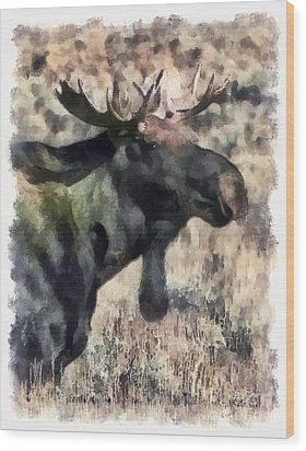Wood Print featuring the photograph Young Bull Moose by Clare VanderVeen