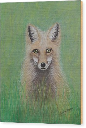 Young Fox Wood Print by David Hawkes