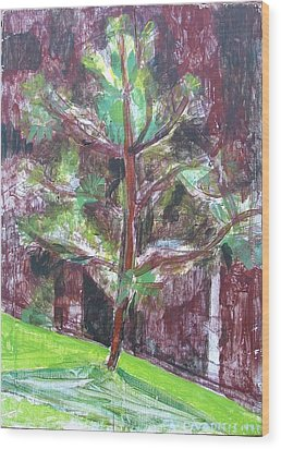 Wood Print featuring the painting Young Pine Tree by Anita Dale Livaditis