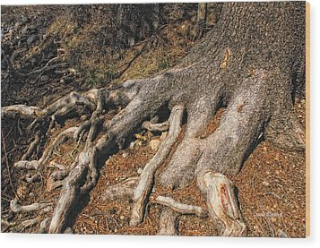 Your Roots Are Showing Wood Print by Donna Blackhall