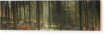 Wood Print featuring the photograph You're Sure Of A Big Surprise by John Chivers