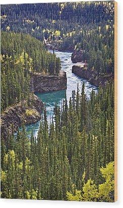 Yukon Territory, Canada Wood Print by Richard Wear