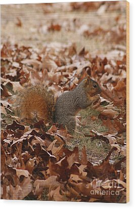 Wood Print featuring the photograph Yummy Snack by Julie Clements