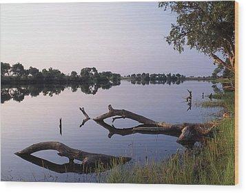 Zambesi River Wood Print by Axiom Photographic