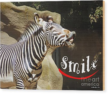 Zebra Smile Wood Print by Methune Hively