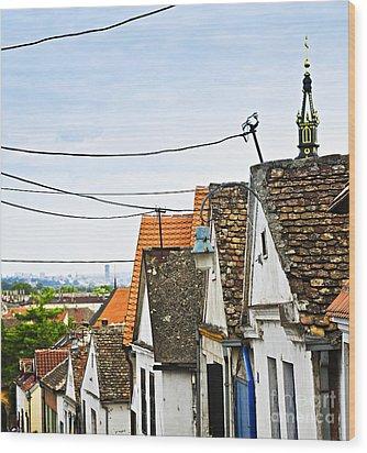 Zemun Rooftops In Belgrade Wood Print by Elena Elisseeva