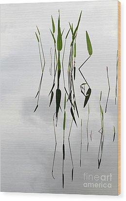 Zen Wood Print by Sabrina L Ryan