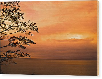 Zen Sunset Wood Print by Jason Naudi