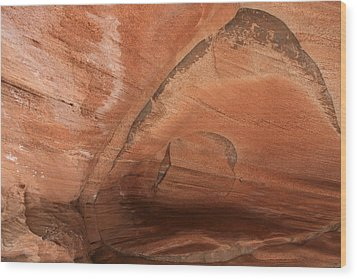 Zion Butterfly  Wood Print